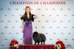 Aristokrat Plus Barry at Champion of Champions Baltic Dog Show