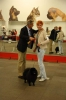 Special Show for Groups V in Riga (Latvia), ARISTOKRAT PLUS BARRY - Best of Breed